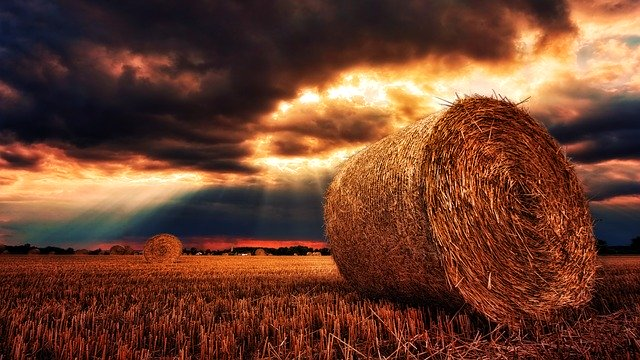 hay roll in field with storm clouds