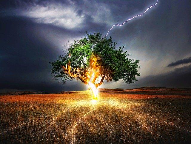 lightning strike on lone tree
