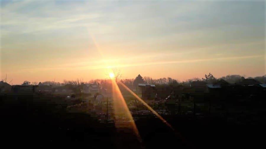 sunrise over allotment