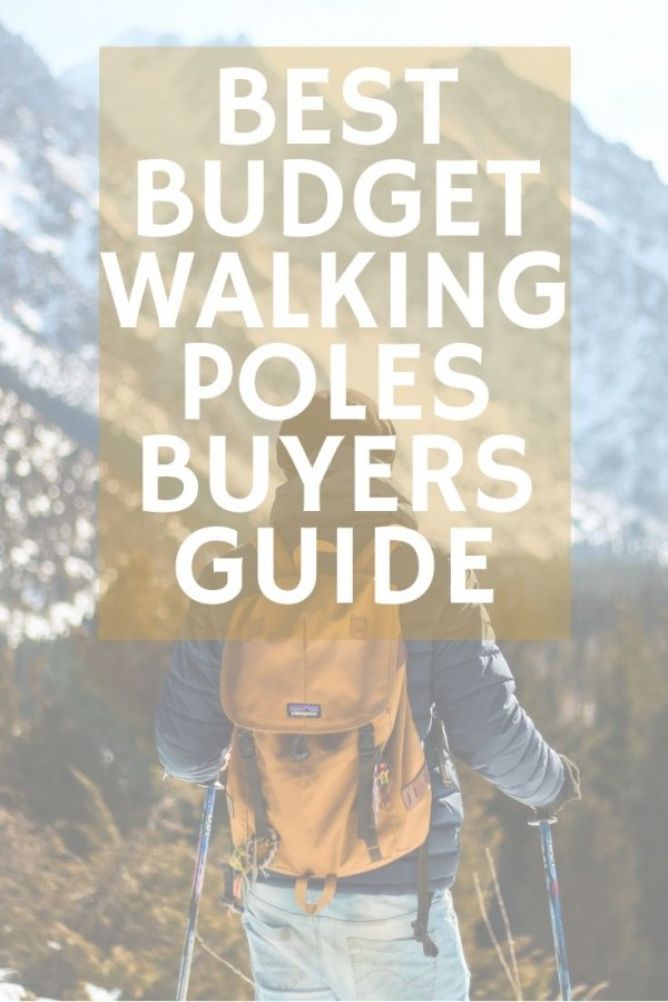 Buyers guide for best budget walking poles pinterest image